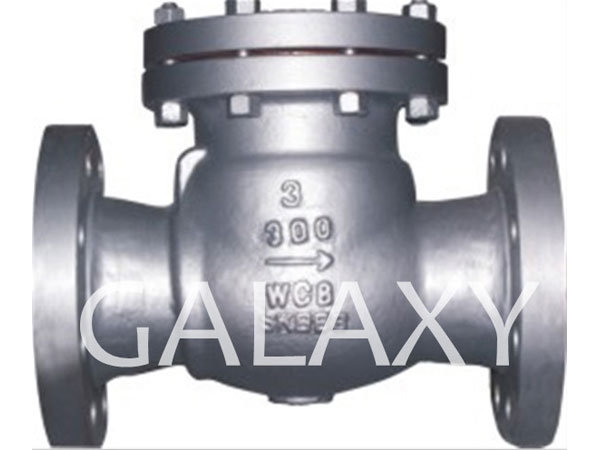 Swing Check Valve, Built-in Structure
