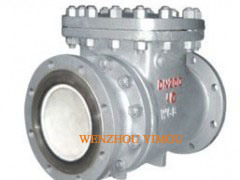 Swing Check Valve with Ceramic Liner