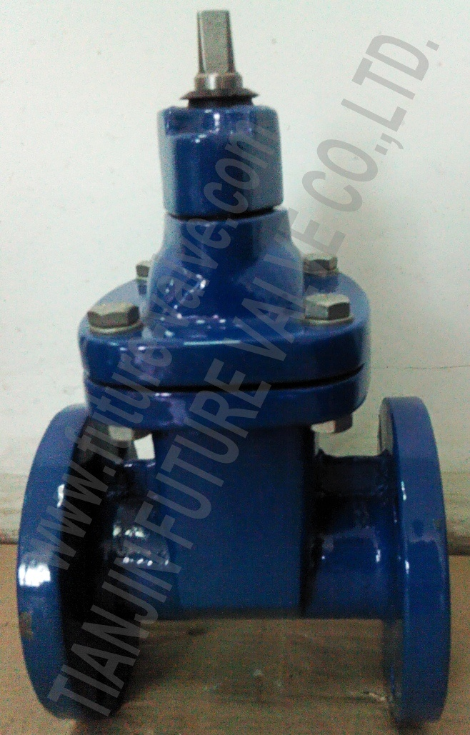 Awwa C509 C515 250psi Non-Ring Stem Resilient Seated Gate Valve (Z45X-125)