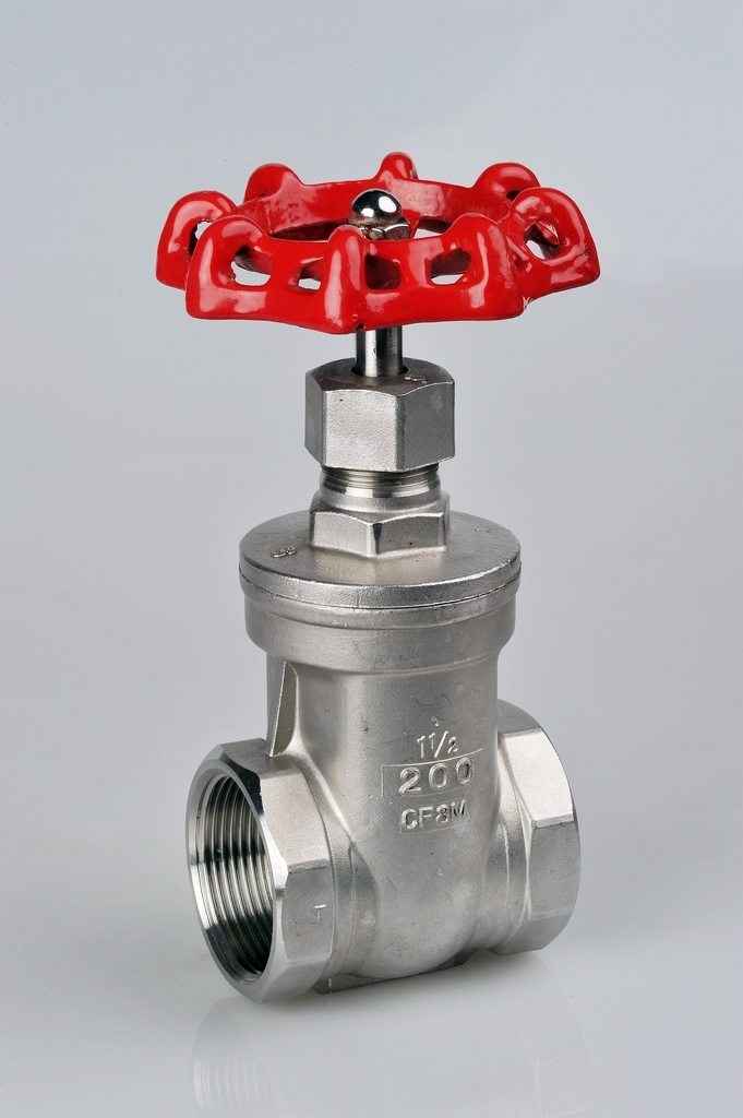 200wog Stainless Steel Gate Valve China Valve Products