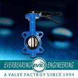 Butterfly Valve (CI-058-Y)