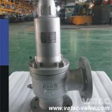 Enclosed Cap Safety Valve