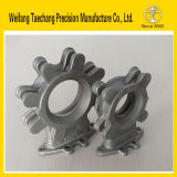 13 Years Experience New Technology Investment Casting Stainless Steel 304 Butterfly Valve Body/Parts