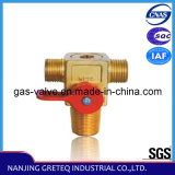 QF-T1M1 Best Price CNG Cylinder Valve for Auto (CNG Kit)