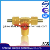 QF-T1B Brass CNG Auto Cylinder Valve with Connector (20Mpa)