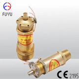 Brass Safety Valve for Compressor