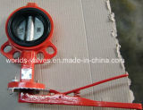 Soft Seated Butterfly Valve (D7A1X-10/16)