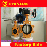 Lug Type Stainless Steel Pn10/16 CE Approved Rubber Seat Butterfly Valve