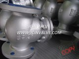 Cast Steel Check Valve for Low Pressure Service