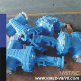 Cast Steel&Cast Iron Cl150&Pn16 R. F&B. W Gate Valve