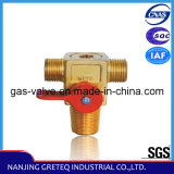 QF-T1M1 Natural Gas Cylinder Valve for Auto (CNG Kit)