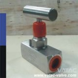 Forged Stainless Steel F304, F316, F304L, F316L Needle Valve with Screw or Thread Bpt or Bsp