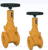 Resilient Seated Gate Valve for Gas Application