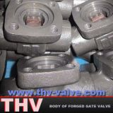 Body of Forged Steel Gate Valve