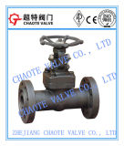Flanged End Forged Steel Gate Valve (Z41H)