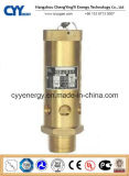 Cryogenic O2 Safety Release Valve