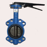 Handle Stainless Steel Butterfly Valve (D71)