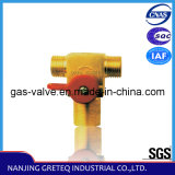 Qf-T1d CNG Vehicle Cylinder Valve for Gas Cylinder in China