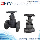 API602 F304L/F3016L Forged Steel Gate Valve
