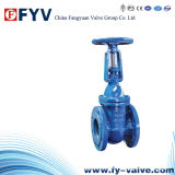 API 600 Cast Iron Solid Wedge Gate Valve
