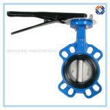 Pip Fittings for Butterfly Valve -001