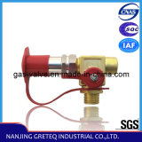 QF-T1H4 CNG Cylinder Filling Valve with Nozzle (CNG car)