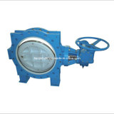 Double Eccentric Resilient Seated Butterfly Valve with Worm Gear (D343X-10/16)