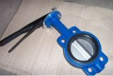 API 609 Center-Line Type Butterfly Valve