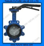 Pinless Lug Type Butterfly Valve with Two Stems (D71X)