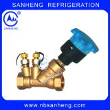 Jpf Series Motorized Static Balancing Valve
