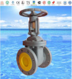ANSI Flange Cast Iron Globe Valve with ISO9001 and API 6D