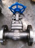 High Pressure Ss Gate Valve Pn64