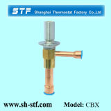 Constant Pressure Expansion Valve for Refrigerator