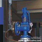 Full Lift Safety Valve with Lever