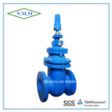 BS Standard Cast Iron Metal Steated Gate Valve