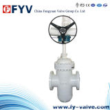 API Wcb Flanged Gate Valve with Gear