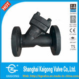 Y- Type Forged Steel Check Valve