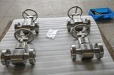 Special Material, F51 Duplex Stainless Steel Forged Globe Valve