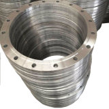 Large Diameter Special Flange Part