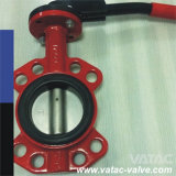 Pn10 / Pn16 Semi-Lug Ductile Iron Butterfly Valve Supplier
