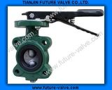 Short Neck Lug Type Butterfly Valve with Two Stems (D71X)