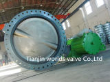 Resilient Seated Double Flange Butterfly Valve (D41X-10/16)