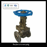 Dn15 150lb Carpenter 20 Hard Seal Gate Valve