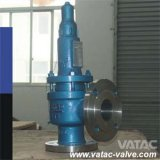 ANSI 1000wog/3000wog/5000wog Flanged Full Lift Safety Valve