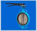 Manual Soft Seal Butterfly Valve