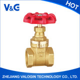 Female Thread and ISO228 Copper Brass Gate Valve (VG-B11021)