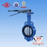 Butterfly Valve, Motorized Butterfly Valve