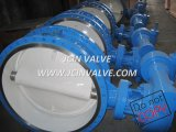 Double Flanged Cast Steel Butterfly Valve with Manual (D343H)