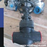 A105 Forged Steel Cl800 NPT&Sw&Bw Globe Valve