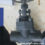 API602 A105 Thread Ends Forged Steel Globe Valve
